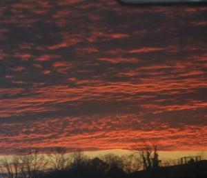 Evening Skyline in Georgia