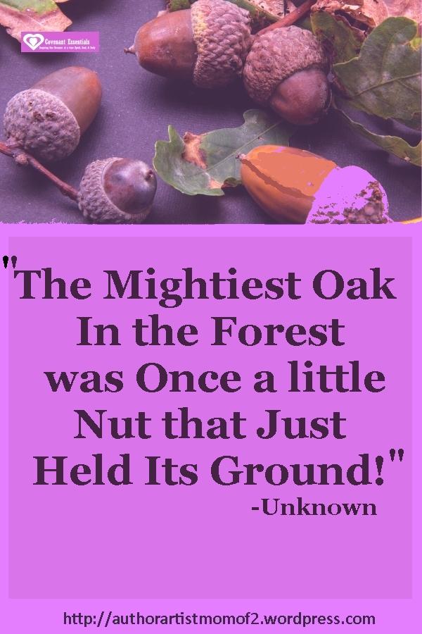 Little nut who held its groun