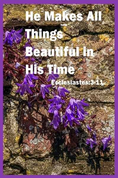 Be Stedfast and Unmoveable, God Makes All Things Beautiful in His Time
